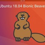 Arriva il Castoro Bionico in Ubuntu, la versione 18.04 si chiamerà Bionic Beaver.