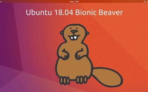 """Ubuntu 18 04 LTS """"Bionic Beaver"""" e derivate ufficiali"""
